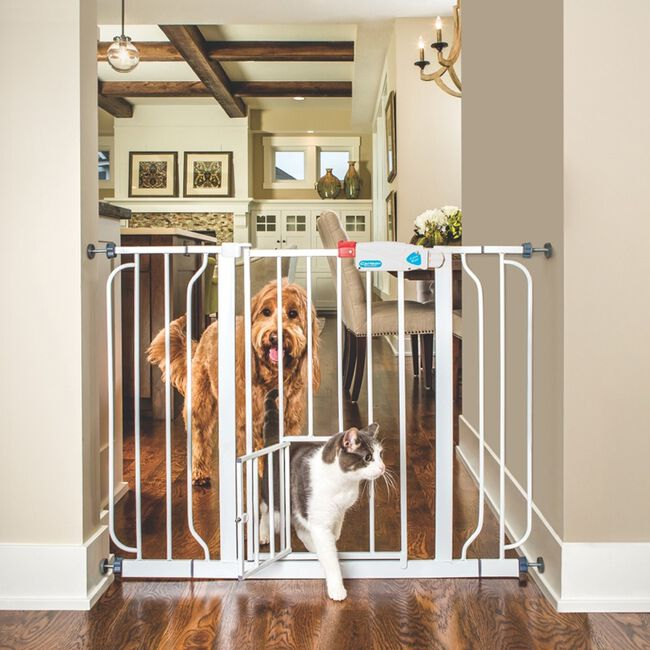 Carlson Extra Wide Walk-Thru Pet Gate image number null
