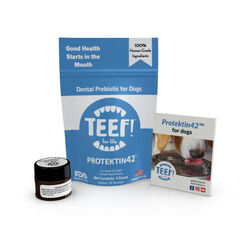 TEEF Protektin42 Dental Prebiotic For Dogs, 30 Day Supply