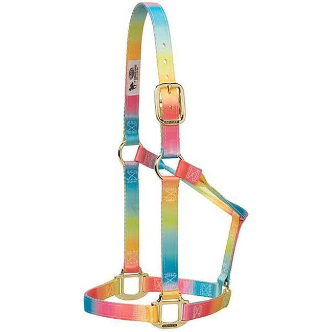 Weaver Leather Polyester Rainbow Adjustable Chin and Throat Snap Halter image number null