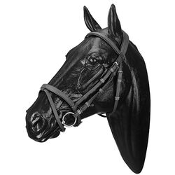 Wintec Synthetic Bridle with Flash Noseband
