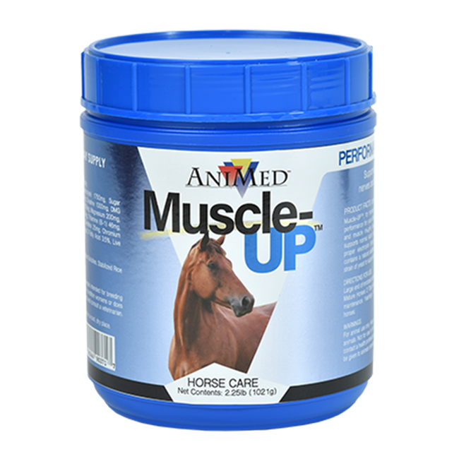 Animed Muscle-Up Powder image number null