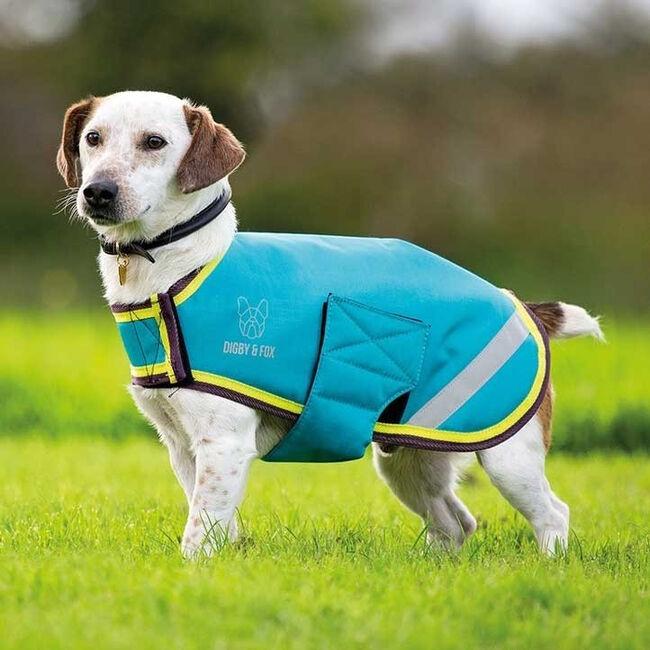 Shires Waterproof Dog Coat Aqua Lime image number null