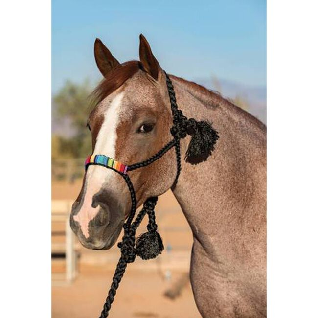 Professional's Choice Cowboy Braided Rope Halter image number null