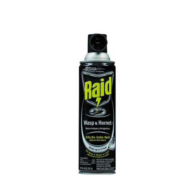Raid Wasp & Hornet Spray image number null