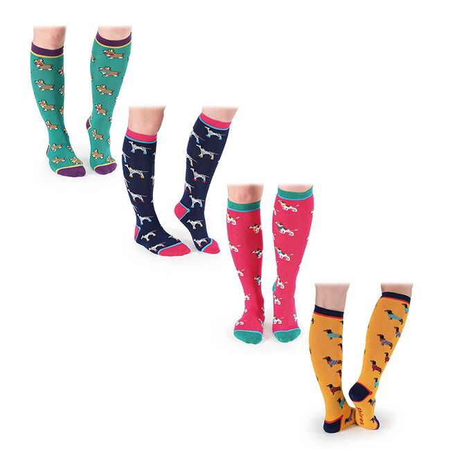 Shires Everyday Women's Sock image number null