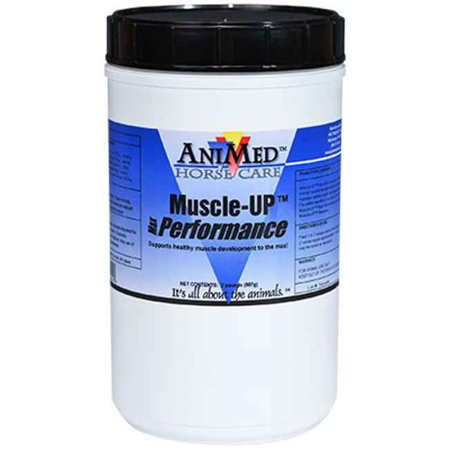 Animed Muscle-UP Max Performance image number null