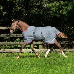 Horseware Amigo Foal Turnout Medium 200g
