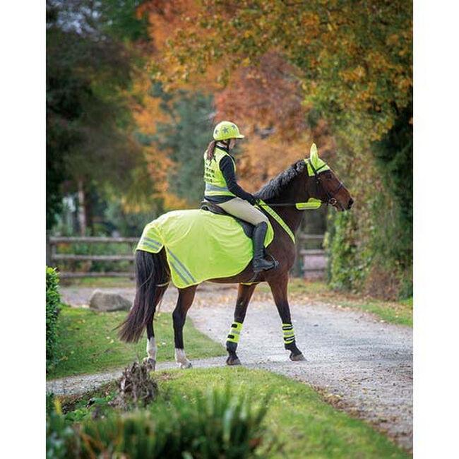 Shires Equestrian Equi-Flector® Vest  image number null