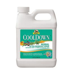 Absorbine Cool Down Herbal After Workout Rinse