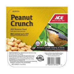 Ace Peanut Crunch Assorted Species Suet Beef