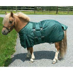 Intrepid Mini Horse Turnout Blanket