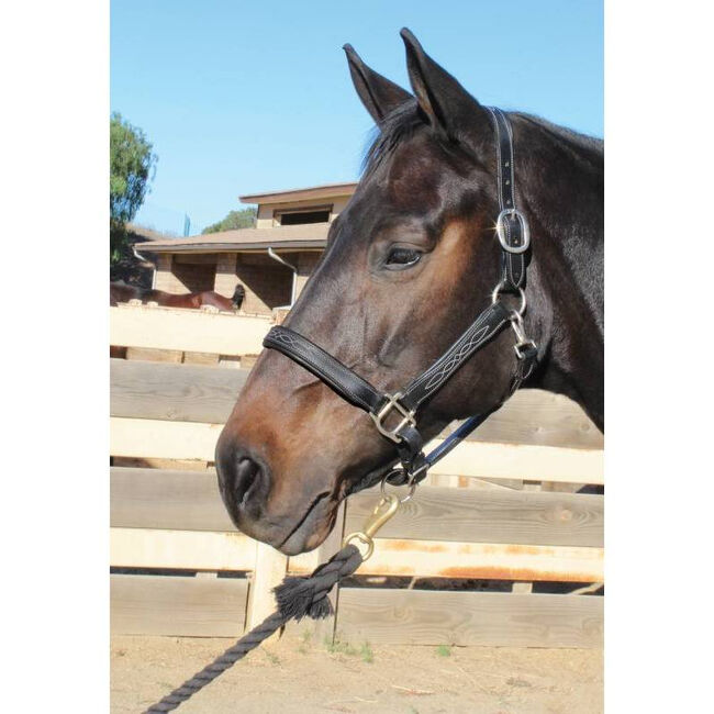 Professional's Choice Leather Halter - Black image number null