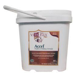 Vita-Flex Pro Accel Health & Wellness Formula