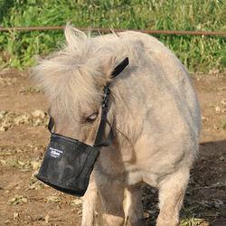 Cashel Feed Rite Bag for the Mini Horse