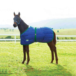 WeatherBeeta 420D Foal Turnout Standard Medium