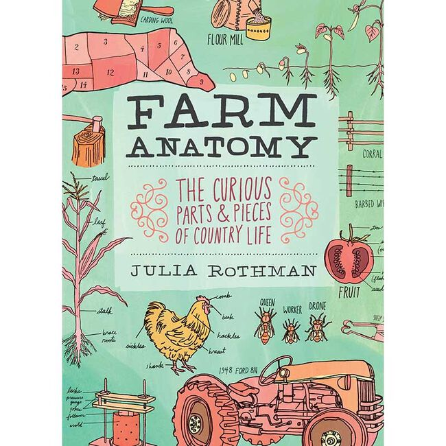 Farm Anatomy Paper Back image number null