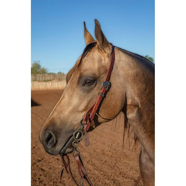 """Professional's Choice Ranch 3/4"""" Single Ear Headstall image number null"""