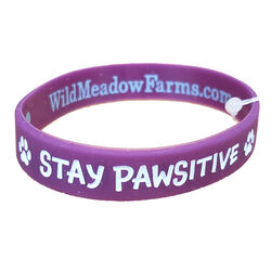 """Wild Meadow Farms Fur Baby Bands """"Stay Pawsitive"""" Purple"""