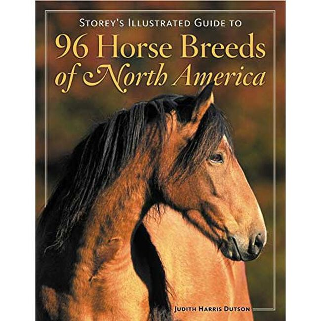 96 Horsebreeds Of North America  image number null