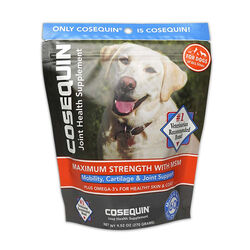 Cosequin Glucosamine & Omega 3 Soft Chew Dog Supplements 60 ct