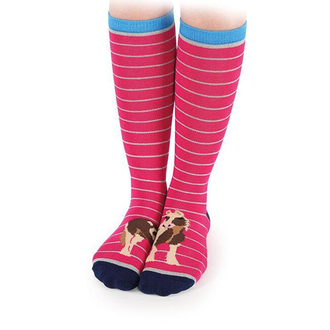Shires Everyday Women's Sock - Colored Toes image number null