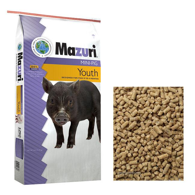 Mazuri Mini Pig Youth  image number null