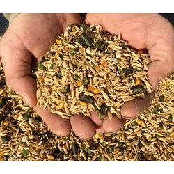 New Country Organic Horse Feed