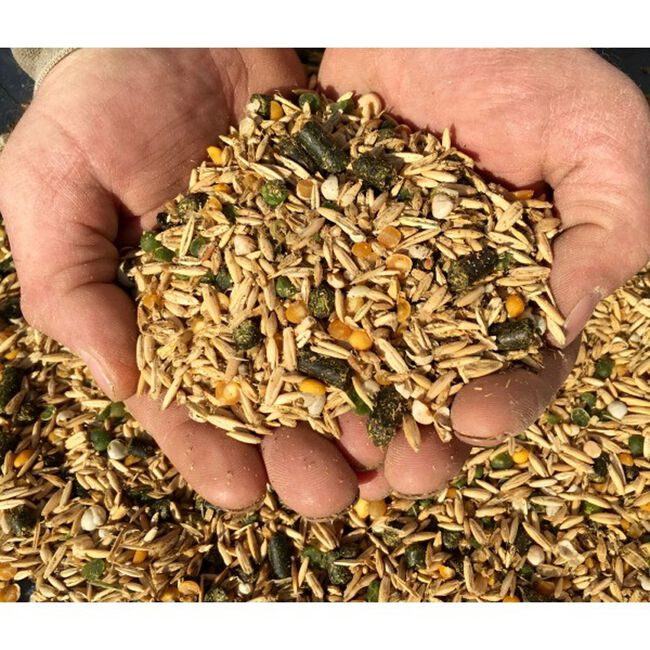 New Country Organic Horse Feed image number null