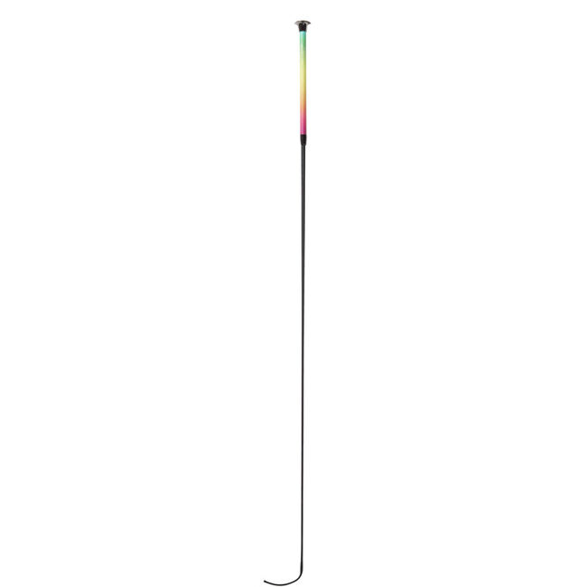 Dublin Ombre Dressage Whip - Rainbow Dream image number null