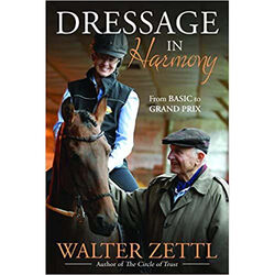 Dressage in Harmony: From Basic to Grand Prix