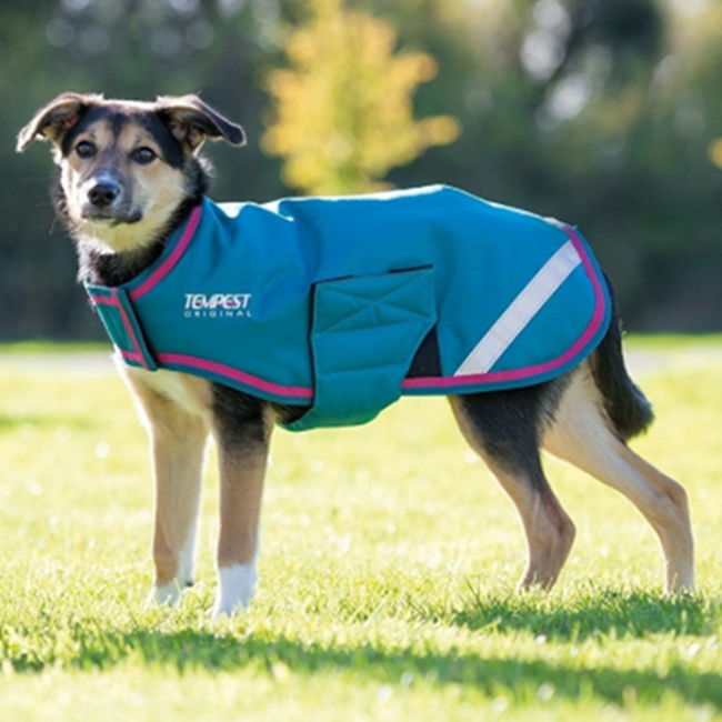 Shires Waterproof Dog Coat - Seafoam image number null