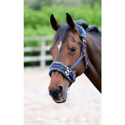 Shires Fleece Lined Lunge Cavesson With Fleece Padded Poll