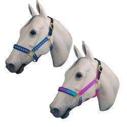 Horse Fare Breakaway Halter