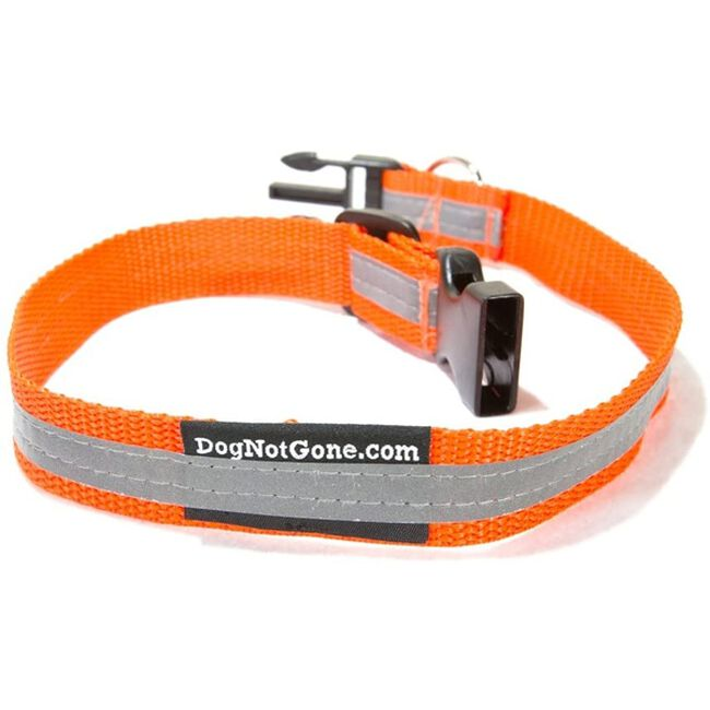 Dog Not Gone Reflective Safety Collar  image number null