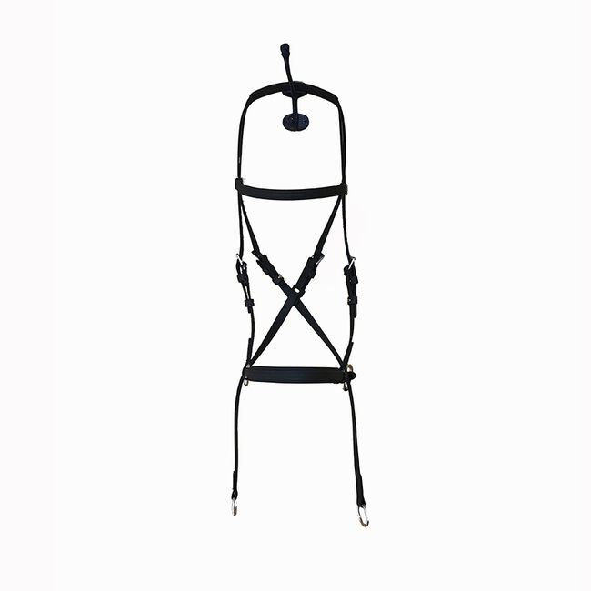 Dr Cook Bitless Deluxe Western Leather Headstall image number null