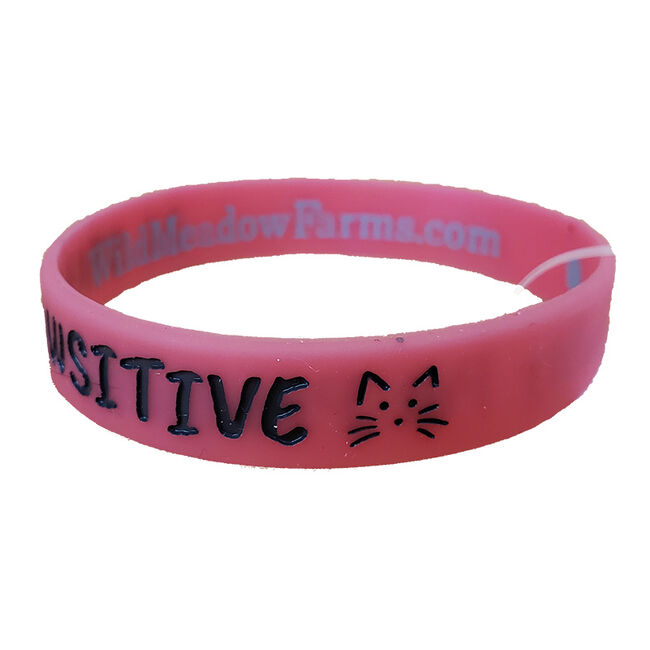 """Wild Meadow Farms Fur Baby Bands """"""""Stay Pawsitive"""""""" Pink"""" image number null"""