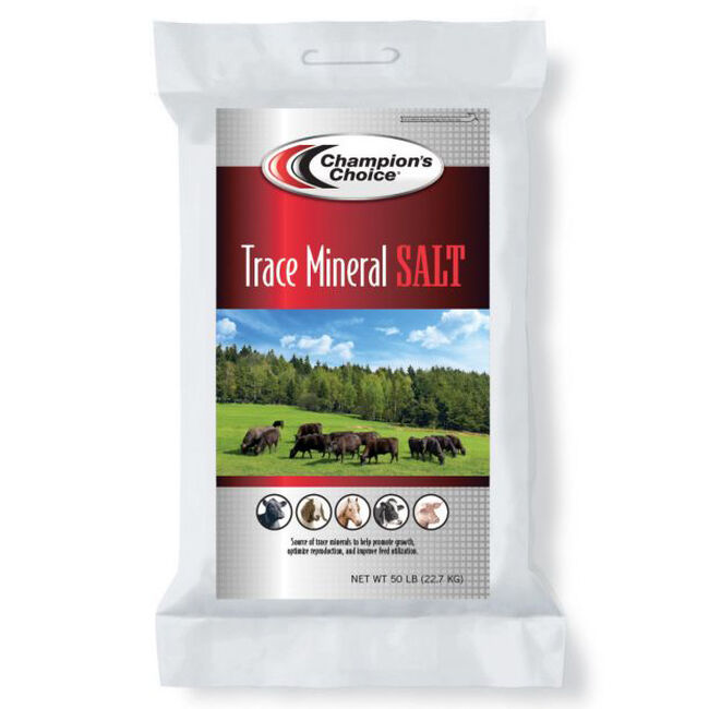 Champion's Choice Trace Mineral Salt, 50lbs image number null