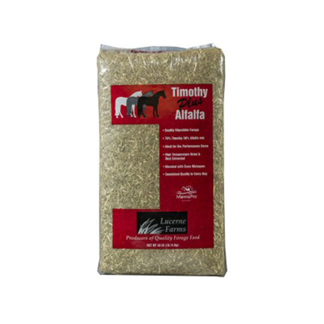 Lucerne Farms Timothy Plus Alfalfa image number null