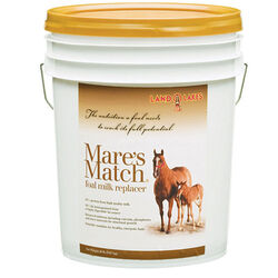 Mare's Match Foal Milk Replacer