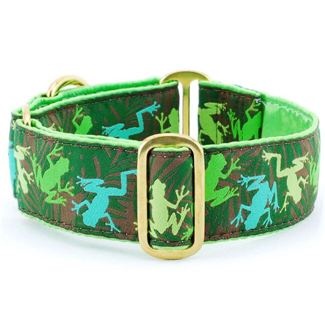 2 Hounds Design Martingale Dog Collar - Coqui Jungle image number null
