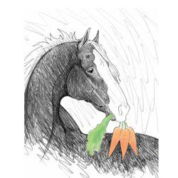 Horse Hollow Press Blank Card Carrot