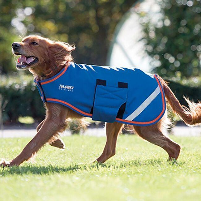 Shires Waterproof Dog Coat - Blue Orange image number null
