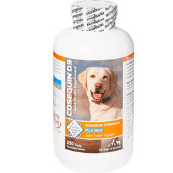 Cosequin DS Max with MSM for Dogs - 250 count
