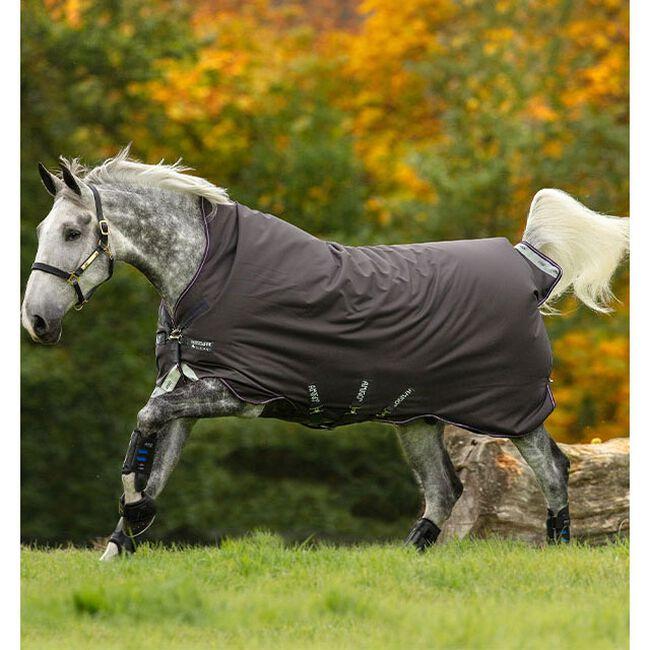 Horseware Amigo Bravo 12 Wug (250g Medium) - Excalibur/Plum/Silver image number null
