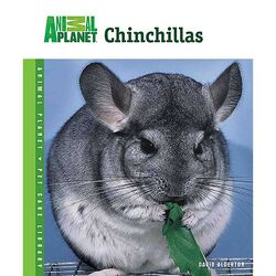 Animal Planet Chinchillas