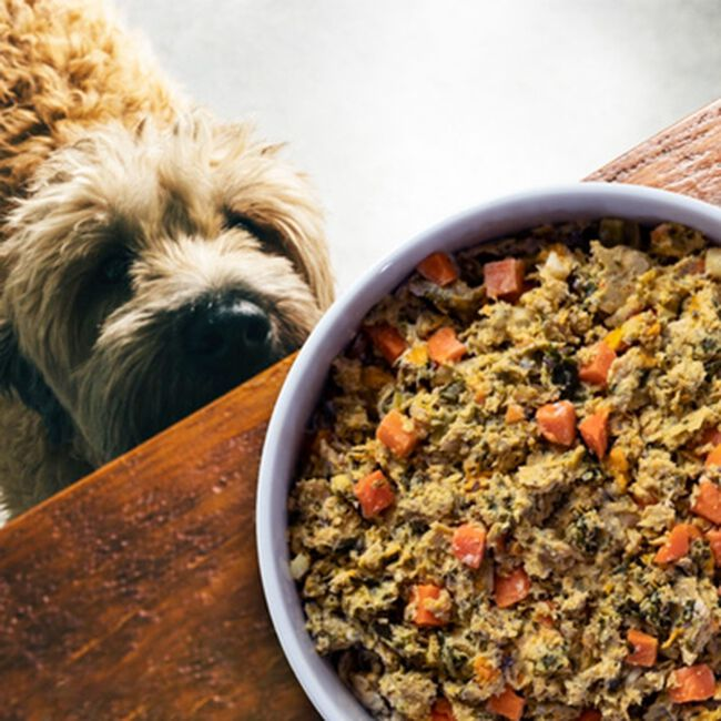 Open Farm Homestead Turkey Gently Cooked Recipe Frozen Dog Food image number null