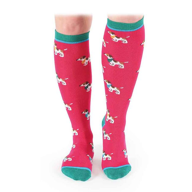 Shires Everyday Women's Sock - Jack Russell image number null