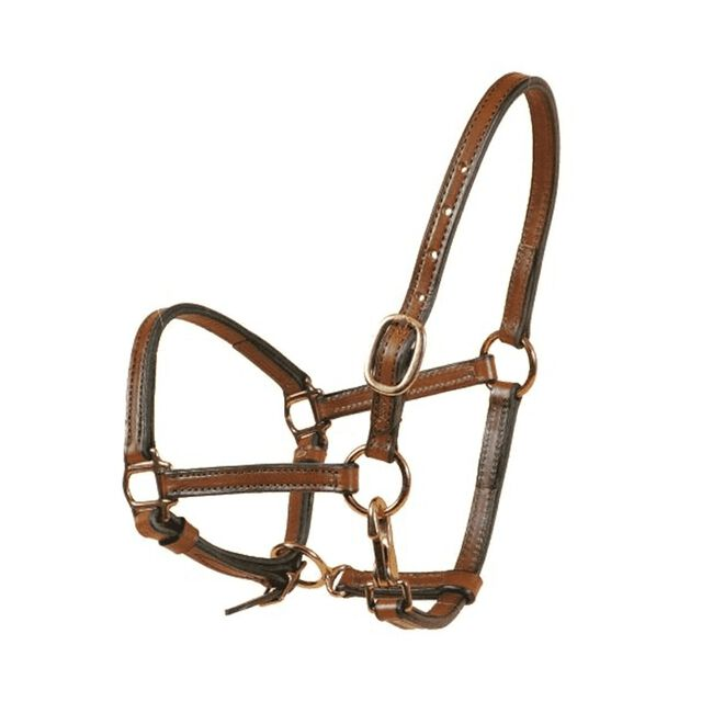 Tory Leather Weanling Halter - Havana image number null