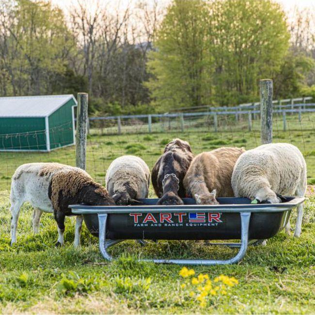 Tarter Goat Bunk Feeder image number null