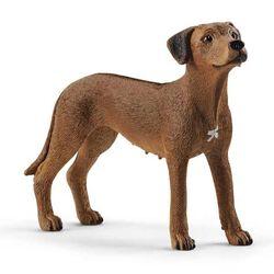 Schleich Rhodesian Ridgeback Toy